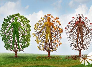 3 Bäume mit Menschen